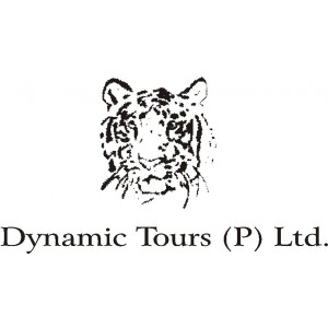 Dynamic Tours pvt Ltd.