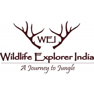 Wildlife Explorer India Pvt. Ltd.